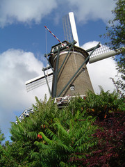 A beautiful Dutch windmill