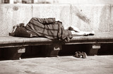 Sleeping the tramp poster