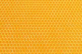 honey cells texture