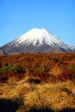 New Zealand volcano poster