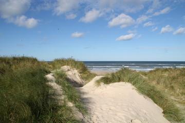 Blick von den Dünen zum Strand
