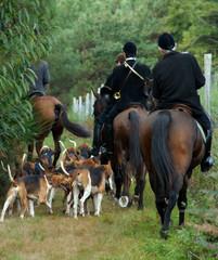 meute de chiens et cavaliers