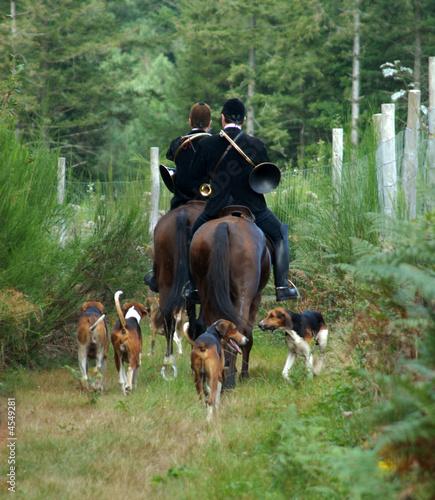 Fotobehang Jacht cavaliers et chiens de chasse à courre en forêt
