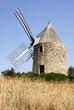 moulin et blé