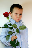 adorable and shy boy with flowers  poster