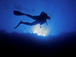 canvas print picture - Scuba diver from below