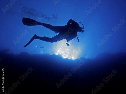 canvas print picture Scuba diver from below