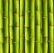 roleta: Bamboo background