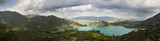 Dalmatian panorama poster