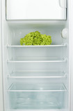 Lettuce in fridge