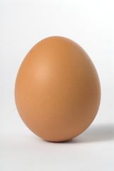 uovo eretto 2