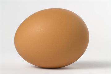 uovo  sdraiato 2