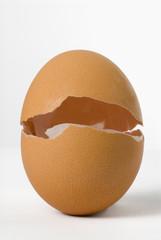 uovo che si apre