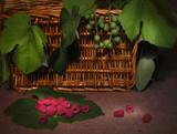 Ripe raspberry, unripe grapes poster