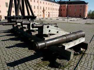 cannoni del castello
