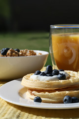 Waffles with Blueberries Breakfast