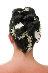 Bride hairstyle backview isolated on white