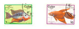Cuba stamps with fish poster