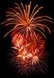 celebration firework