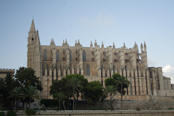 Kathedrale in Palma (4)