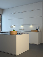 Modern minimalist kitchen