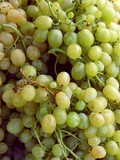 clusters of white grapes poster
