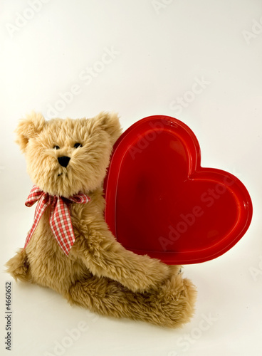 Plush Teddy Bear with Big Red Heart