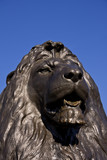 Bronze Lion, Trafalgar Square, London poster