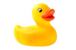 canvas print picture - Rubber Duckling