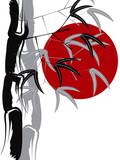 Fototapety calligraphic bamboo zen