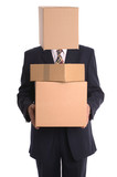 Box Man - Delivery poster