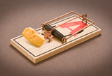 Mousetrap with Cheese poster