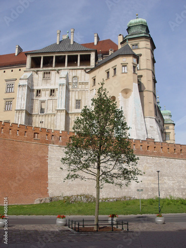 Royal Wawel Castle.Krakow - Poland. See more in my portfolio