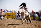 Saddle Bronc poster