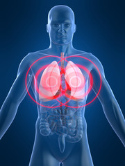 lungenschmerzen