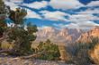 Leinwandbild Motiv Red Rock Canyon, Nevada