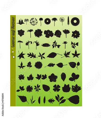 siluetas de flores y hojas en vector