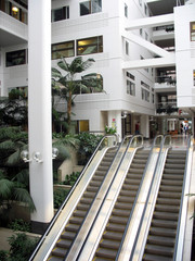 Escalators in an office building