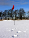 Winter Golf -Towards the Flag poster