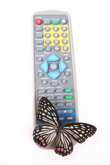 Butterfly using remote control