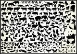animals 250 vectors