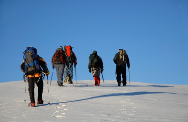 Five people trekking  on a mountain
