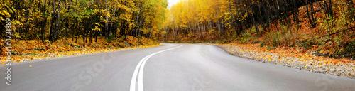 autumn road panorama