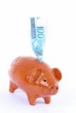 Pig Bank poster