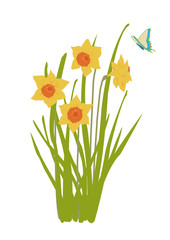 daffodil plant in bloom with butterfly