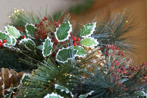 Christmas Holly and Greenery