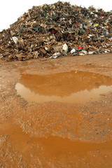Rusty Puddle