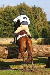 horse and rider following an eventing track