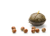 Hazelnuts and Candle, isolated on white background poster