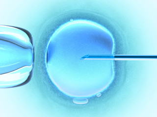 In vitro fecundation using sperm (cold color)